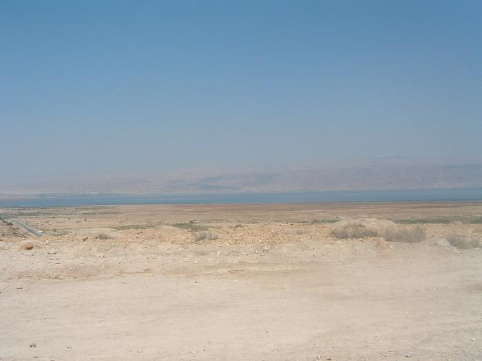 Israel 313